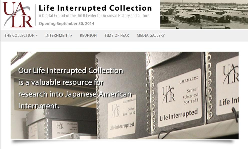 Screenshot of Life Interrupted exhibit