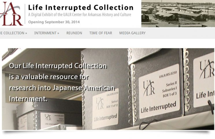 Life Interrupted Collection